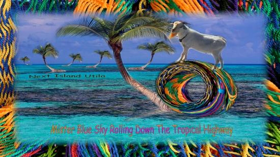Mister Blue Sky Guarding The Magic Sea Slug Garden