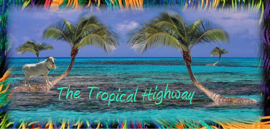 TropicalHighway