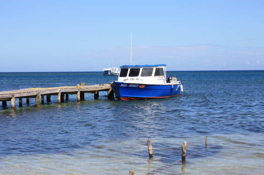 Miss Trinity-Mangrove Bight-just down the coast from Michael Rock-beach