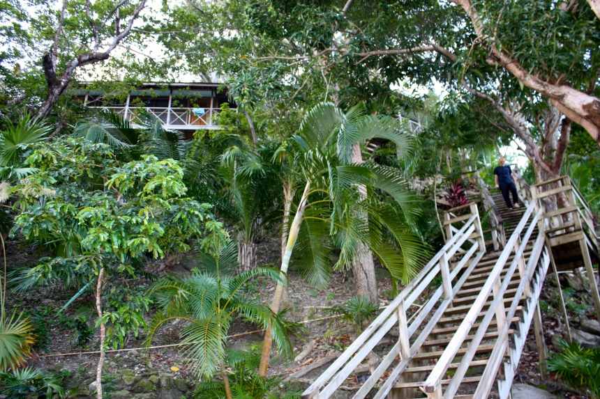 Stairs to hillside cabins-Guanaja Island Club aka The End of The World resort