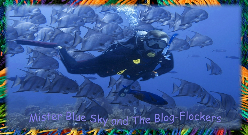 Mister Blue Sky's Blog-Flockers