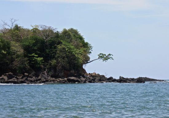Hangman's Point - The Hanging Tree - Boca Brava Island